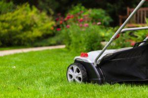 mowing best practices
