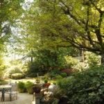 Site Trees